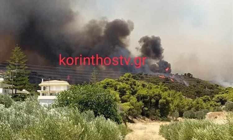 Πυρκαγιά – Κεχριές: Εκκενώθηκαν τρεις οικισμοί και μία κατασκήνωση κοντά στο κύριο μέτωπο