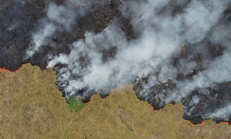 Φλέγεται και πάλι ο Αμαζόνιος – Ρεκόρ πυρκαγιών στο Παντανάλ