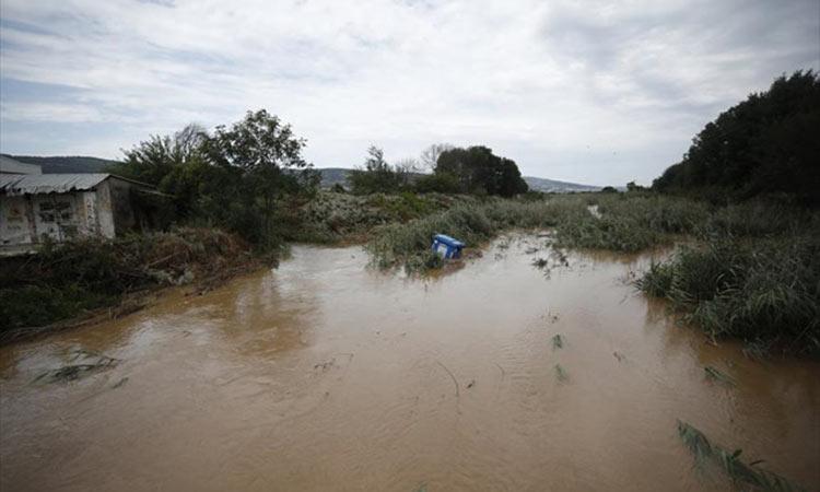 Λαγκαδάς: Μεγάλες οι ζημιές για αγρότες και κτηνοτρόφους από την κακοκαιρία
