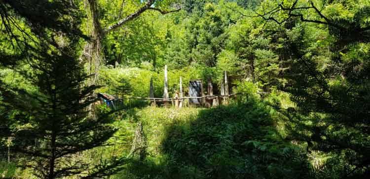Πεζοπορία στον Πάρκο Ασωπού στην Παύλιανη Φωκίδας διοργανώνει ο ΠΑΟΔΒ