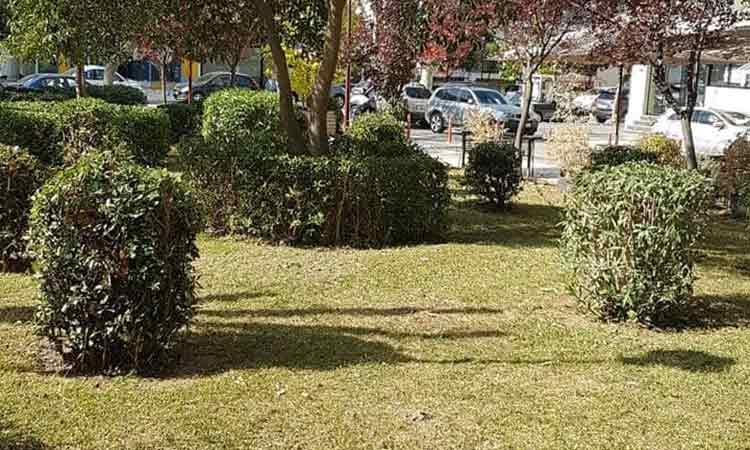 Καθαρισμός και συντήρηση πρασίνου της πλατείας Ελευθερίας στον Δήμο Βριλησσίων