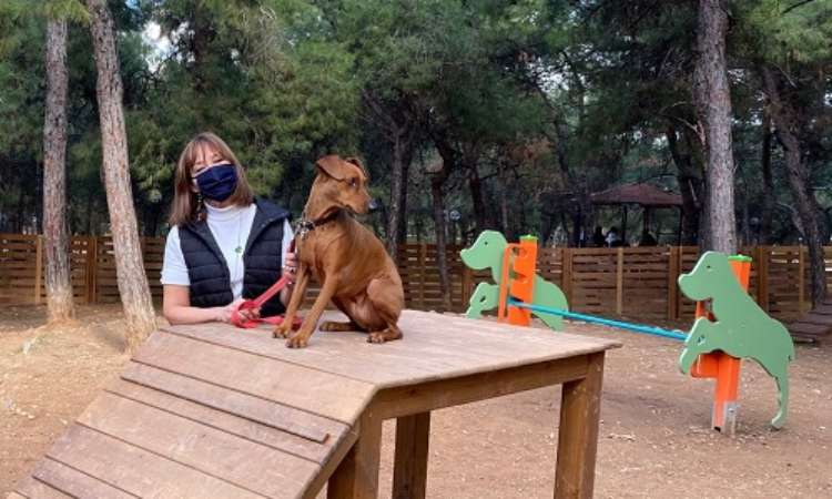 Αναβάθμιση των δύο πάρκων σκύλων του Δήμου Παπάγου-Χολαργού