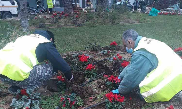 Καθαριότητα και Πράσινο στις καθημερινές προτεραιότητες του Δήμου Αμαρουσίου