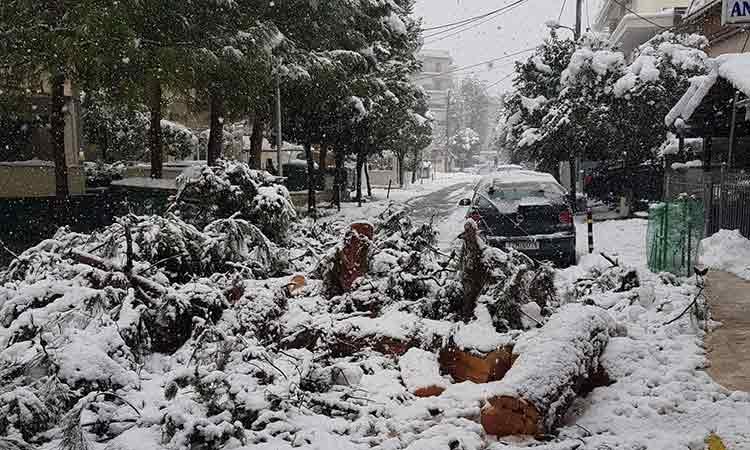 Ν. Μπαρμπούνης: H «Μήδεια» έφερε τον πανικό στη διοίκηση του Δήμου Ηρακλείου