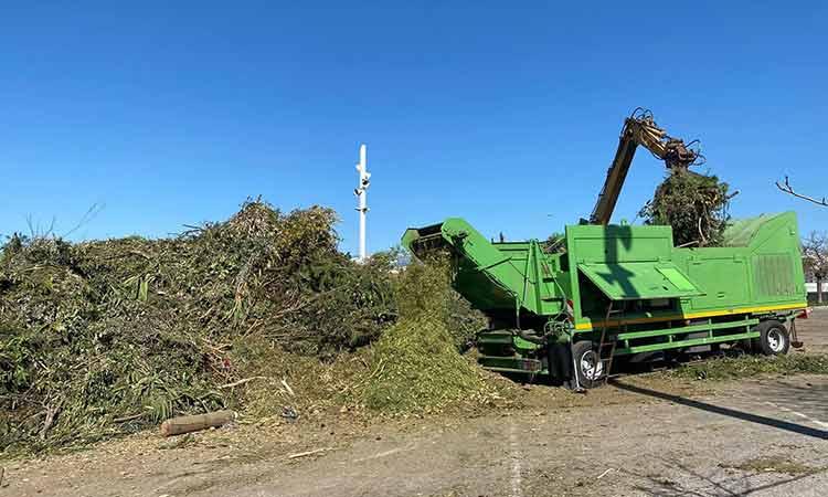 Απομάκρυνση δένδρων και κλαδιών που άφησε πίσω η «Μήδεια» στα Βόρεια από την Περιφέρεια Αττικής
