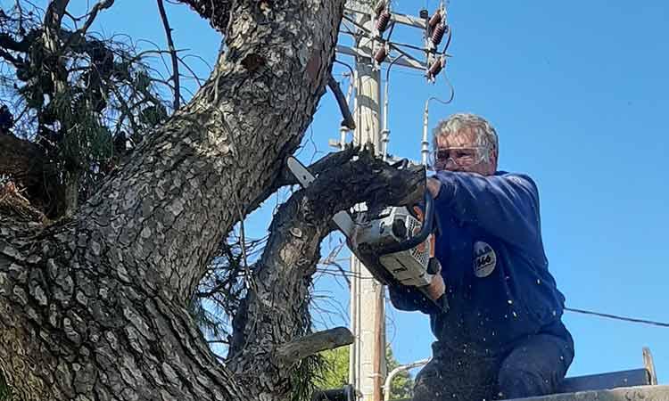 Ο ΣΠΑΠ συνδράμει τον Δήμο Πεντέλης στο… συμμάζεμα της «Μήδειας»