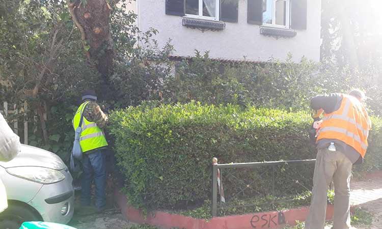 Πρόγραμμα εργασιών καθαριότητας και συντήρησης πρασίνου στο Μαρούσι