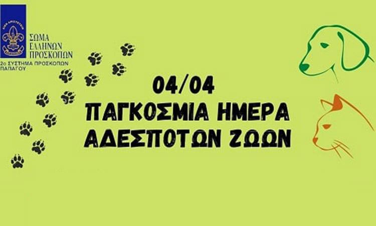 To 2o Σύστημα Προσκόπων Παπάγου συλλέγει ζωοτροφές στις 10 και 11 Απριλίου