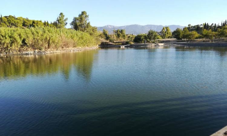 Παρεμβάσεις φυτοπροστασίας στο πάρκο «Αντώνης Τρίτσης»