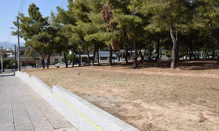 Αποψιλώσεις και καθαρισμοί στο άλσος Βεΐκου από τον Δήμο Ν. Ιωνίας