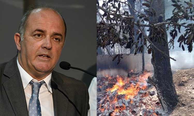 Γ. Καλαφατέλης: Υπό μερικό έλεγχο η μεγάλη φωτιά σε Σταμάτα, Ροδόπολη και Διόνυσο