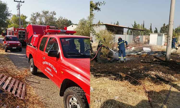 Φωτιά σε οικοπεδικό χώρο στο Πάτημα Χαλανδρίου – Άμεση επέμβαση