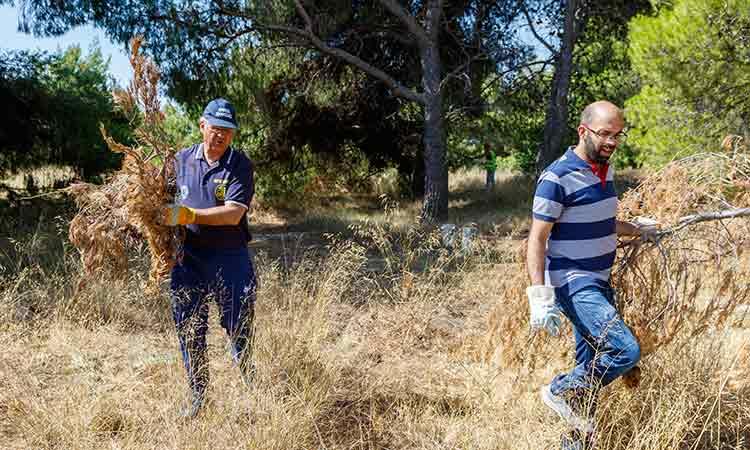 Αρμόδιες υπηρεσίες και δήμαρχος Κηφισιάς καθάρισαν το δάσος Κεφαλαρίου