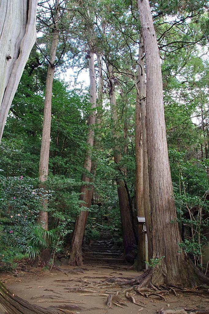 conv0005 8 - 白山神社(はくさんじんじゃ)