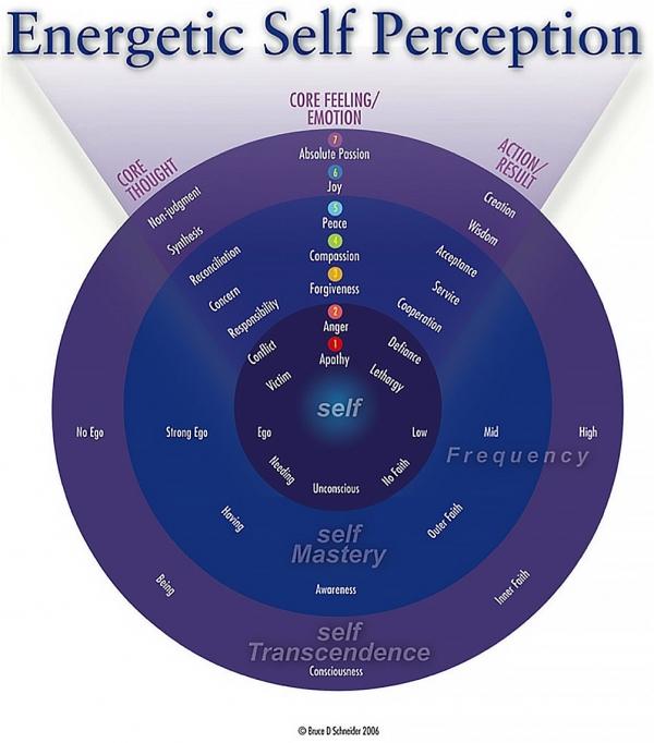 BruceDSchneider_EnergyLeadership_book_macro