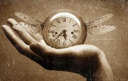 time-flies-janus-250x159