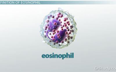 What is a HIGH Eosinophil Cell Count?