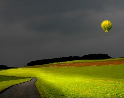 Nature Shot #13 by Veronika Pinke