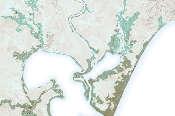 2020 Hurricanes Damage Vulnerable Mangroves