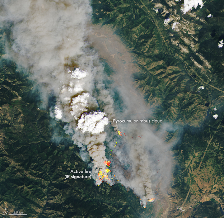 In june 2021, a potent heat wave sent temperatures soaring above 115°f (46°c) on multiple days. Blazes Rage In British Columbia