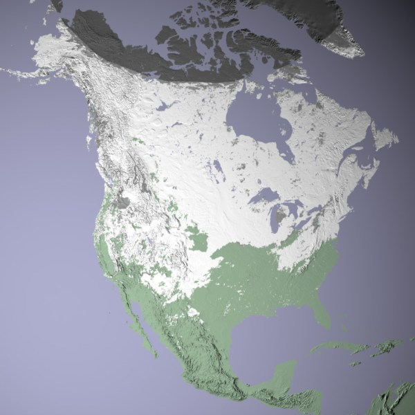 North American Snow Cover : Image of the Day
