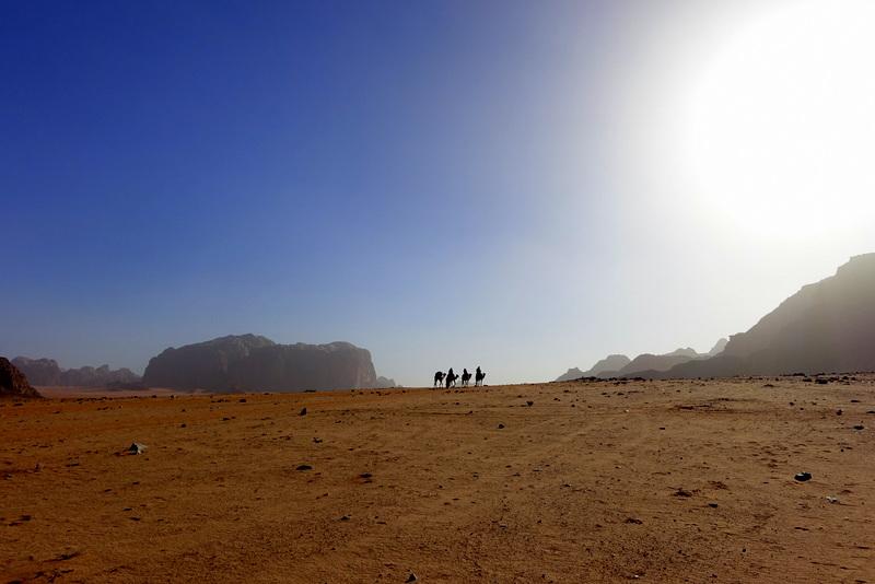 contrasti nel deserto