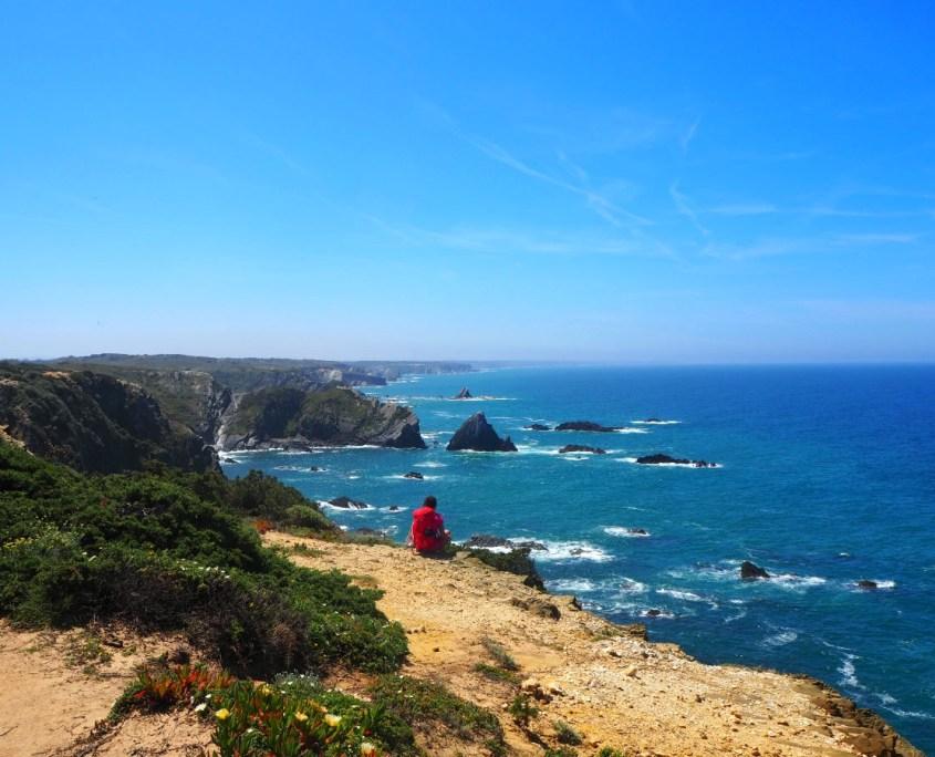 splendido panorama sulle scogliere e sull'Oceano