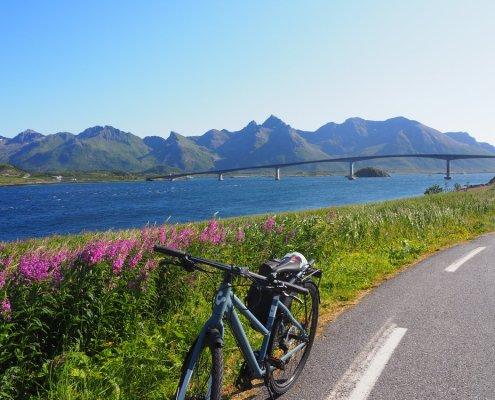 arrivo in bici a Gimsoya