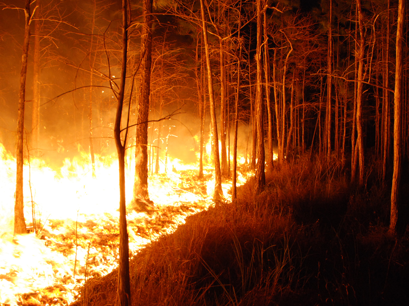 wildfire-florida-panther-nwr-2009