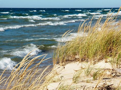 Freshwater waves lap against the dune grass on Lake Michigan's eastern shoreline.