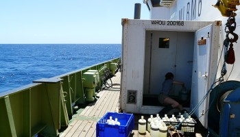 These seawater samples can help scientists track the fate of carbon in the ocean.