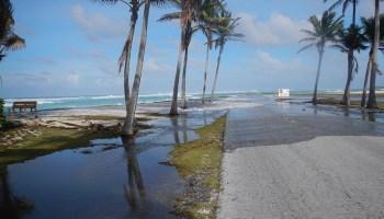 Sea level rise on a reef-lined island coast