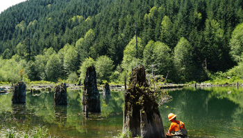 Klickitat Lake in western Oregon formed when a landslide that originated along the forested ridgeline dammed a stream.