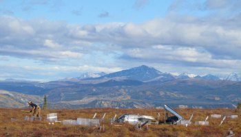 researcher measures fall thaw depth at the Eight Mile Lake study site in interior Alaska