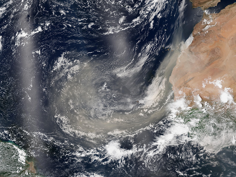 A satellite view of Saharan dust plumes over the Atlantic Ocean