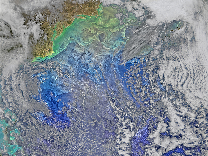 A satellite image of the Gulf Stream slicing across a turbulent western North Atlantic Ocean