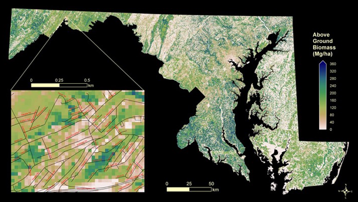 A high-resolution map of biomass in Maryland