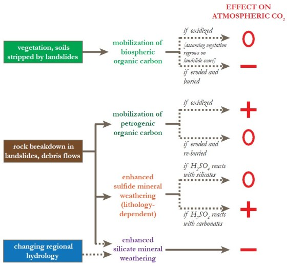 Possible effects of earthquake-triggered landslides on the carbon cycle