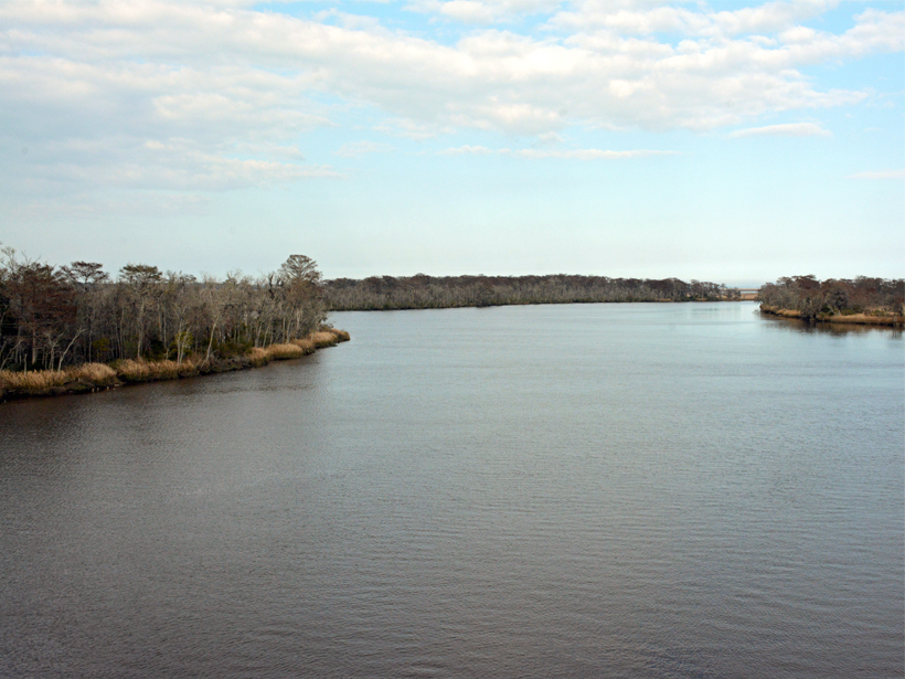 Photo of a river limned by marshlands