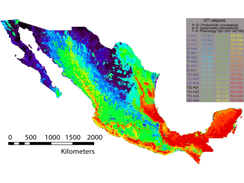 Spatial cluster analysis of carbon uptake in Mexico