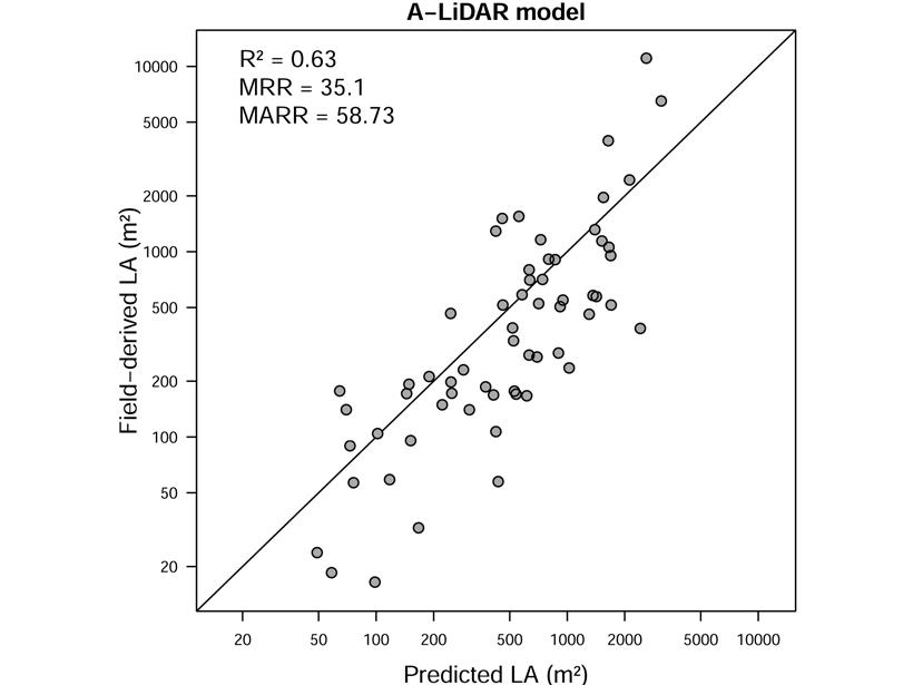 Graph showing performance of remote sensing-based model for leaf area