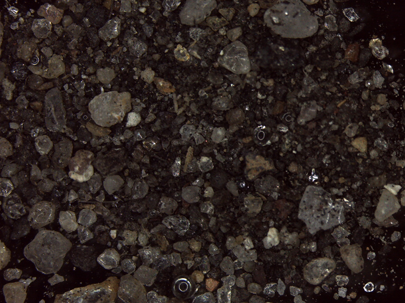 Close-up image of gravel and dust on an asphalt