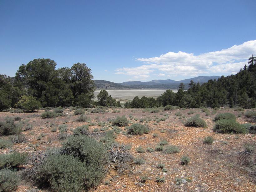Pinyon pines and sagebrush above the basin of Baldwin Lake in the San Bernardino Mountains