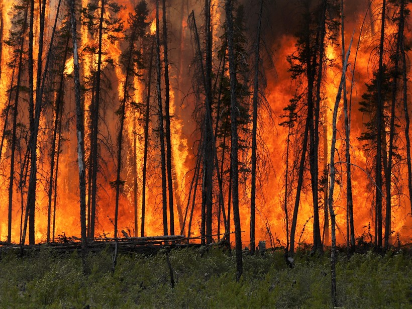 Experimental crown fire in the boreal forest, Northwest Territories, Canada