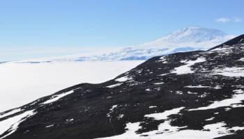 A rocky hillside in Antarctica with snow-covered Mount Erebus in the background