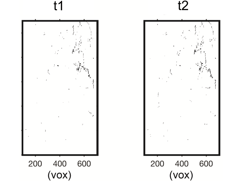 Xray tomograms taken at two times which show fractures and pores within solid rock.