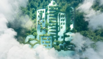 Lake in a shape of a city in the middle of pure and fresh rain forest scenery viewed from a bird's perspective.
