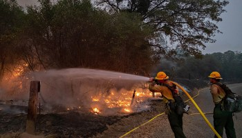 A firefighter sprays water onto burning brush beside a road.