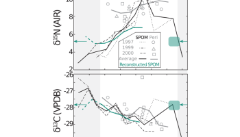Two plots comparing seasonal variability in mussel stable isotope values from the periostracum with measured suspended particulate organic matter, used to reconstruct the isotopic composition of suspended particulate organic matter.