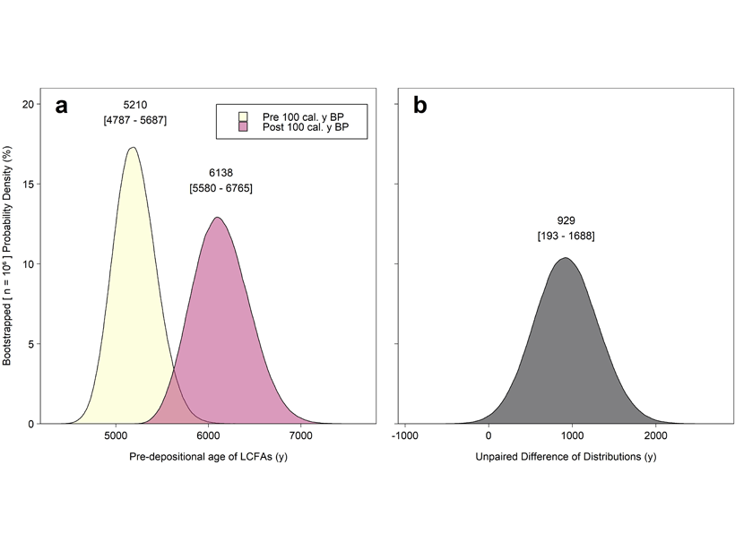 Plots showing probability distributions derived from measurements of 14C in long-chain fatty acids